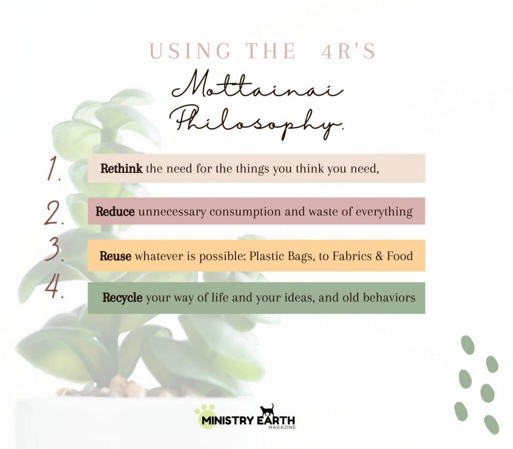 what is MOTTAINAI-